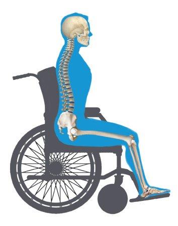 Neutral-Pelvic-Position.jpg